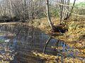 Lohbach, Quelle in Stoettham.jpg